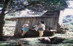 "<span class=""caption-caption"">Forestry hut in Lamington National Park, O'Reilly's side</span>, 1968. <br />Slide, collection of <span class=""caption-contributor"">Ruth Read</span>."