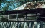 "<span class=""caption-caption"">Roof and verandah, old Laura Homestead, Lakefield National Park, Cook Shire</span>, 1982. <br />Slide, collection of <span class=""caption-contributor"">Ruth Read</span>."