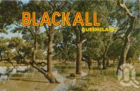"<span class=""caption-caption"">Coolibah trees along the Blackall River</span>, c1964. <br />Postcard folder by <span class=""caption-publisher"">Sydney G Hughes Pty Ltd</span>, collection of <span class=""caption-contributor"">Centre for the Government of Queensland</span>."