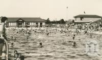 "<span class=""caption-caption"">Swimming pool, Dalby</span>, c1938. <br />Postcard by <span class=""caption-publisher"">Murray Studios Pty Ltd</span>, collection of <span class=""caption-contributor"">Centre for the Government of Queensland</span>."