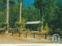"<span class=""caption-caption"">Forestry Headquarters, Fraser Island</span>, c1975. <br />Postcard folder by <span class=""caption-publisher"">Murray Views Pty Ltd</span>, collection of <span class=""caption-contributor"">Centre for the Government of Queensland</span>."