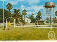 "<span class=""caption-caption"">Rotary Park at Theodore, Dawson-Callide Valley</span>, c1972. <br />Postcard folder by <span class=""caption-publisher"">Murray Views Pty Ltd</span>, collection of <span class=""caption-contributor"">Centre for the Government of Queensland</span>."