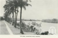 "<span class=""caption-caption"">The Corso, Johnstone River, Innisfail</span>, c1958. <br />Postcard folder by <span class=""caption-publisher"">Murray Views Pty Ltd</span>, collection of <span class=""caption-contributor"">John Young</span>."