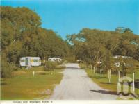 "<span class=""caption-caption"">Caravan park, Woodgate Beach</span>, c1964. <br />Postcard folder by <span class=""caption-publisher"">Murray Views Pty Ltd</span>, collection of <span class=""caption-contributor"">Centre for the Government of Queensland</span>."