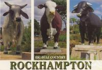 "<span class=""caption-caption"">Big bull country, Rockhampton</span>, c1988. <br />Postcard by <span class=""caption-publisher"">Murray Views Pty Ltd</span>, collection of <span class=""caption-contributor"">Centre for the Government of Queensland</span>."