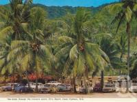 "<span class=""caption-caption"">The kiosk through coconutpalms, Ellis Beach, Cook Highway</span>, 1969. <br />Postcard folder by <span class=""caption-publisher"">Murray Views Pty Ltd</span>, collection of <span class=""caption-contributor"">Centre for the Government of Queensland</span>."