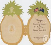 "<span class=""caption-caption"">Pineapple invitation</span>, 1920. <br />Ephemera, collection of <span class=""caption-contributor"">John Oxley Library, SLQ</span>."