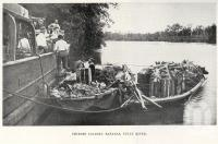 "<span class=""caption-caption"">Chinese loading bananas, Tully River</span>. <br />From <span class=""caption-book"">North Queensland, Australia</span>, <span class=""caption-publisher"">Queensland Government Intelligence and Tourist Bureau</span>, 1908, collection of <span class=""caption-contributor"">Fryer Library, UQ</span>."