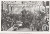 """<span class=""""caption-caption"""">Bush-house, Hotel Delta, Ayr</span>. <br />From <span class=""""caption-book"""">North Queensland</span>, <span class=""""caption-publisher"""">Government Printer</span>, 1920, collection of <span class=""""caption-contributor"""">Fryer Library, UQ</span>."""