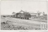 "<span class=""caption-caption"">Inkerman Sugar Mill</span>. <br />From <span class=""caption-book"">North Queensland</span>, <span class=""caption-publisher"">Government Printer</span>, 1920, collection of <span class=""caption-contributor"">Fryer Library, UQ</span>."