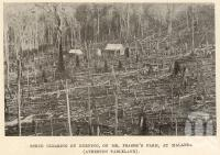 "<span class=""caption-caption"">Scrub clearing by burning, Malanda (Atherton Tableland)</span>. <br />From <span class=""caption-book"">Tablelands of North Queensland</span>, <span class=""caption-publisher"">Queensland Government Intelligence and Tourist Bureau</span>, 1918, collection of <span class=""caption-contributor"">Fryer Library, UQ</span>."
