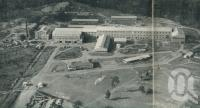 "<span class=""caption-caption"">The Petrie Mill from the air</span>, 1957. <br />Booklet, collection of <span class=""caption-contributor"">John Young</span>."