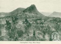 "<span class=""caption-caption"">Cunningham's Gap, Main Range</span>, c1925. <br />Booklet, collection of <span class=""caption-contributor"">John Young</span>."