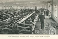 "<span class=""caption-caption"">Dalgety and Company's Sheep Sale Rooms, Bulimba, Brisbane</span>. <br />From <span class=""caption-book"">Queensland Sheep and Wool Industry</span>, <span class=""caption-creator"">Queensland Government Intelligence and Tourist Bureau</span>, Brisbane, 1918, collection of <span class=""caption-contributor"">Centre for the Government of Queensland</span>."