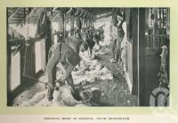 "<span class=""caption-caption"">Shearing sheep at Jimbour</span>. <br />From <span class=""caption-book"">Glimpses of Sunny Queensland (2nd edition)</span>, <span class=""caption-creator"">Queensland Government Intelligence and Tourist Bureau</span>, Brisbane, 1912, collection of <span class=""caption-contributor"">Centre for the Government of Queensland</span>."