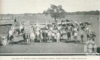 "<span class=""caption-caption"">Preparing to muster cattle, Strathmore Station, Bowen District</span>. <br />From <span class=""caption-book"">Glimpses of Sunny Queensland (3rd edition)</span>, <span class=""caption-creator"">Queensland Government Intelligence and Tourist Bureau</span>, Brisbane, 1914, collection of <span class=""caption-contributor"">Centre for the Government of Queensland</span>."