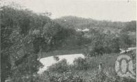 "<span class=""caption-caption"">Street's coffee plantation, Kuranda</span>. <br />From <span class=""caption-book"">The Pocket Queensland</span>, <span class=""caption-creator"">Queensland Government Intelligence and Tourist Bureau</span>, Brisbane, 1921, collection of <span class=""caption-contributor"">Centre for the Government of Queensland</span>."