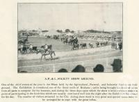 "<span class=""caption-caption"">Agricultural, Pastoral and Industrial Society show ground, Gin Gin</span>. <br />From <span class=""caption-book"">The Burnett and Isis Pictorial</span>, <span class=""caption-creator"">Richards & Kingdon</span>, Bundaberg, 1927, collection of <span class=""caption-contributor"">Centre for the Government of Queensland</span>."