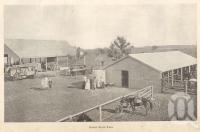 "<span class=""caption-caption"">Gindie State farm</span>. <br />From <span class=""caption-book"">Queensland Agricultural Journal</span>, 1901, collection of <span class=""caption-contributor"">Fryer Library, UQ</span>."