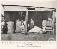 "<span class=""caption-caption"">Baling cotton at Mr C.G. Young's farm, Deeford, Dawson Valley Line</span>. <br />From <span class=""caption-book"">Queensland Agricultural Journal</span>, 1922, collection of <span class=""caption-contributor"">Fryer Library, UQ</span>."