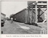 "<span class=""caption-caption"">14,000 bags of FAQ, Allora Wheat Dump</span>. <br />From <span class=""caption-book"">Queensland Agricultural Journal</span>, 1922, collection of <span class=""caption-contributor"">Fryer Library, UQ</span>."