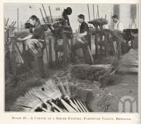 "<span class=""caption-caption"">A corner of a broom factory, Fortitude Valley</span>. <br />From <span class=""caption-book"">Queensland Agricultural Journal</span>, 1927, collection of <span class=""caption-contributor"">Fryer Library, UQ</span>."