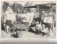 "<span class=""caption-caption"">Enthusiastic members of the Merlwood-Cloyna District Pig Club</span>. <br />From <span class=""caption-book"">Queensland Agricultural Journal</span>, 1927, collection of <span class=""caption-contributor"">Fryer Library, UQ</span>."