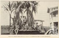 "<span class=""caption-caption"">Italians taking stools of cane to an agricultural show in north Queensland</span>. <br />From <span class=""caption-book"">Queensland Agricultural Journal</span>, 1932, collection of <span class=""caption-contributor"">Fryer Library, UQ</span>."