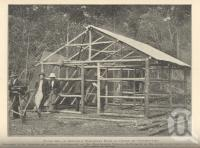 "<span class=""caption-caption"">A settler's temporary home, Beerburum Tobacco Settlement</span>. <br />From <span class=""caption-book"">Queensland Agricultural Journal</span>, 1932, collection of <span class=""caption-contributor"">Fryer Library, UQ</span>."