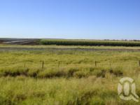 "<span class=""caption-caption"">Sorghum fields</span>, 2009. <br />Digital image, collection of <span class=""caption-contributor"">Centre for the Government of Queensland MS</span>."