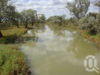 "<span class=""caption-caption"">Longreach river branch of the Thomson River</span>, 2009. <br />Digital image, collection of <span class=""caption-contributor"">Centre for the Government of Queensland MS</span>."