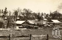 "<span class=""caption-caption"">Pechay's sawmill, Crows Nest</span>, 1900-1915. <br />Photograph, collection of <span class=""caption-contributor"">JC Smith Collection, Fryer Library, UQ</span>."