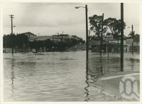 "<span class=""caption-caption"">West End flood</span>, 1974. <br />Photograph, collection of <span class=""caption-contributor"">Szwedzinski family</span>."