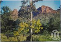 "<span class=""caption-caption"">Virgin Rock, Central Highlands</span>, c1970-2000. <br />Postcard, collection of <span class=""caption-contributor"">Murray Views Collection</span>."