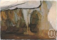 "<span class=""caption-caption"">Column in organ chamber, Royal Arch Cave, Chillagoe</span>, c1970-2000. <br />Postcard, collection of <span class=""caption-contributor"">Murray Views Collection</span>."