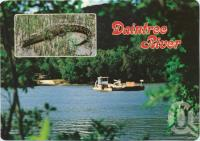 "<span class=""caption-caption"">The Daintree River Ferry, the link with the Cape Tribulation Road</span>, c1970-2000. <br />Postcard, collection of <span class=""caption-contributor"">Murray Views Collection</span>."