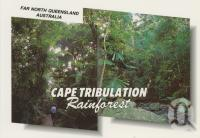 "<span class=""caption-caption"">The lush dense rainforest of Cape Tribulation</span>, c1970-2000. <br />Postcard, collection of <span class=""caption-contributor"">Murray Views Collection</span>."