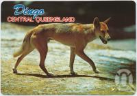 "<span class=""caption-caption"">Dingo, departure point for Blackdown Tableland National Park</span>, c1970-2000. <br />Postcard, collection of <span class=""caption-contributor"">Murray Views Collection</span>."