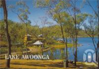 "<span class=""caption-caption"">Awoonga Dam (Picnic Area), Benarby</span>, c1970-2000. <br />Postcard, collection of <span class=""caption-contributor"">Murray Views Collection</span>."