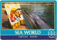 "<span class=""caption-caption"">Leia one of Sea World's Bottlenosed Dolphins produces another masterpiece</span>, c1970-2000. <br />Postcard, collection of <span class=""caption-contributor"">Murray Views Collection</span>."