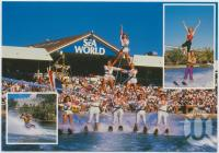 "<span class=""caption-caption"">Sea World, Gold Coast</span>, c1970-2000. <br />Postcard, collection of <span class=""caption-contributor"">Murray Views Collection</span>."
