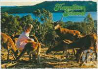 "<span class=""caption-caption"">Hamilton Island, In the heart of the Whitsundays, Great Barrier Reef.</span>, c1970-2000. <br />Postcard, collection of <span class=""caption-contributor"">Murray Views Collection</span>."