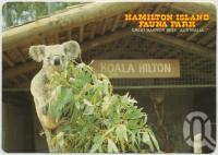 "<span class=""caption-caption"">Wee Willy Wonka, a special guest at the Koala Hilton, Hamilton Island Fauna Park</span>, c1970-2000. <br />Postcard, collection of <span class=""caption-contributor"">Murray Views Collection</span>."