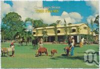 "<span class=""caption-caption"">Children attending to miniature Fallabella horses on the lawns at The Palms - only 10kms from Surfers Paradise at Nerang, The Palms Horse Stud Farm</span>, c1970-2000. <br />Postcard, collection of <span class=""caption-contributor"">Murray Views Collection</span>."