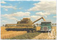 "<span class=""caption-caption"">Harvesting oats on Les Sands property, Jandowae</span>, c1970-2000. <br />Postcard, collection of <span class=""caption-contributor"">Murray Views Collection</span>."