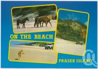 "<span class=""caption-caption"">Fraser Island</span>, c1970-2000. <br />Postcard, collection of <span class=""caption-contributor"">Murray Views Collection</span>."