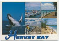 "<span class=""caption-caption"">Australia's aquatic playground, Hervey Bay</span>, c1970-2000. <br />Postcard, collection of <span class=""caption-contributor"">Murray Views Collection</span>."