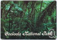 "<span class=""caption-caption"">Rainforest, Cooloola National Park Rainbow Beach</span>, c1970-2000. <br />Postcard, collection of <span class=""caption-contributor"">Murray Views Collection</span>."