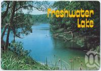 "<span class=""caption-caption"">Freshwater Lake, Cooloola National Park Rainbow Beach</span>, c1970-2000. <br />Postcard, collection of <span class=""caption-contributor"">Murray Views Collection</span>."