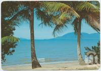 "<span class=""caption-caption"">Cardwell, Hinchinbrook Island from the foreshore</span>, c1970-2000. <br />Postcard, collection of <span class=""caption-contributor"">Murray Views Collection</span>."